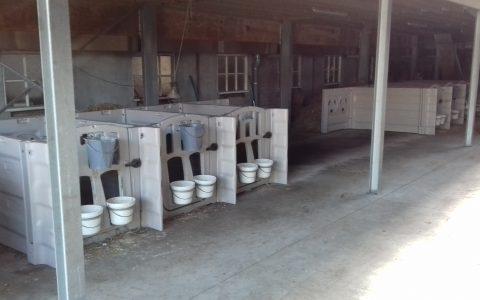 | Milchviehbetrieb Van Laerhoven-De Bruyn