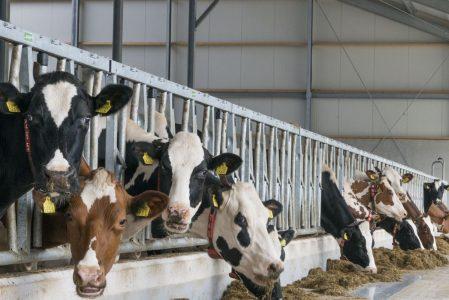 Melkvee- & Akkerbouwdagen Opende