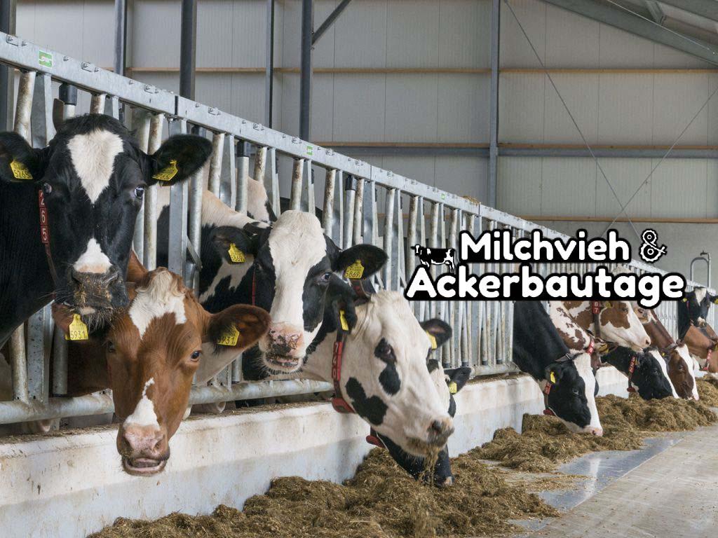 Melkvee- en Akkerbouwdagen Münster-Nienberge