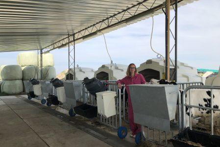 Melkveehouderij Van Der Steege, Genemuiden, NL