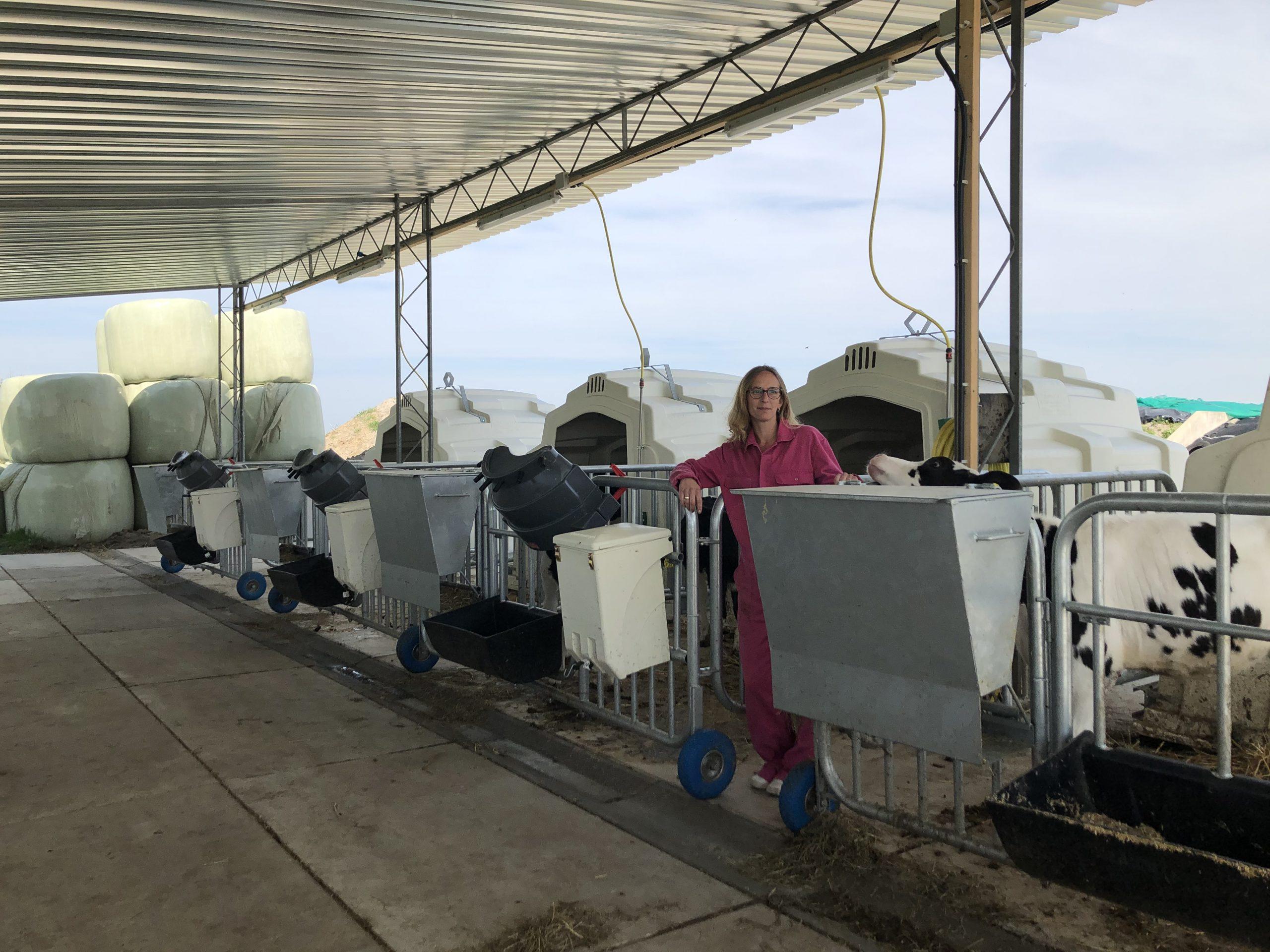 Milchviehbetrieb van der Steege, Genemuiden, (NL)